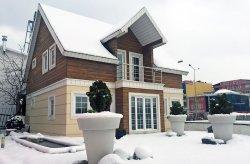 ორსართულიანი პანელის სახლები